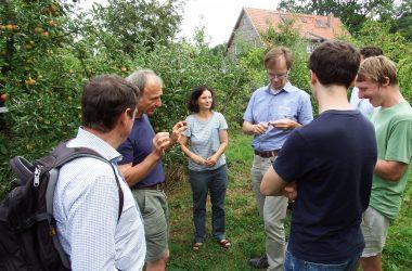 Personen lauschen einem Vortrag inmitten von Apfelbäumen